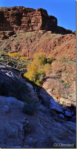 12 Waterfall along Bright Angel trail GRCA NP AZ pano (413x800)