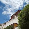 Lhasa-White.JPG
