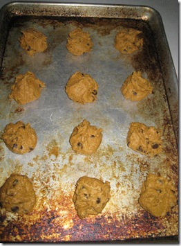Pumpkin Cookies 006