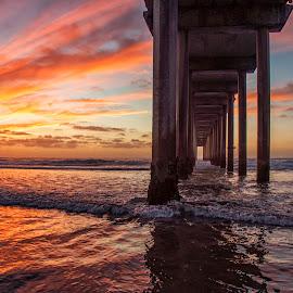 Scripps Pier by Taylor Sanderson - Landscapes Beaches ( san diego, sunset, pier, ocean, beach )