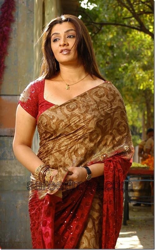 Aarti-Agarwal-Brasso-Saree-Sareetimes.com-Sareiblog