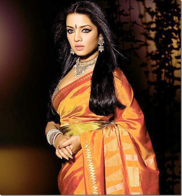 Celina-Jaitely-Designer-Silk-Saree