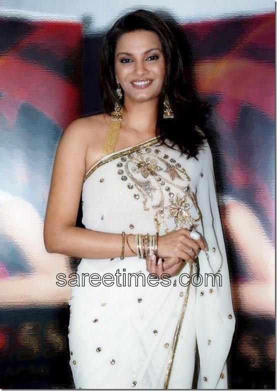 Diana-Hayden-White-Embroidery-Sari