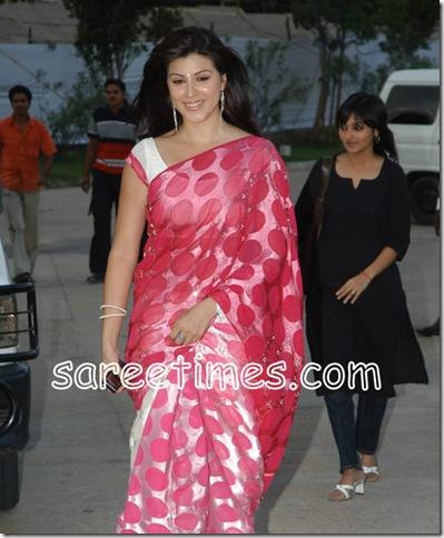 karishmakotak-Pink-Brasao-Saree