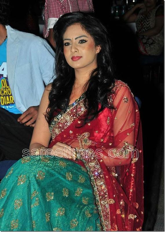 Nikesha-Patel-Embroidery-Sari