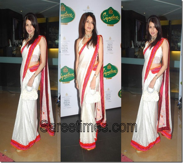 White_Bollywood_Sari