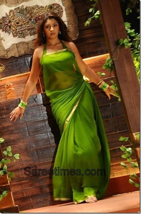 Richagangopadhya_Green_Plain_Sari