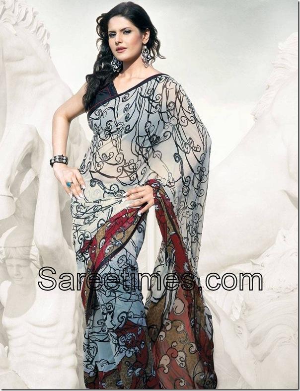 Zarine-Khan-Geprgette-Sari