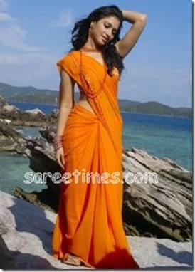 Tamanna-Orange-Saree