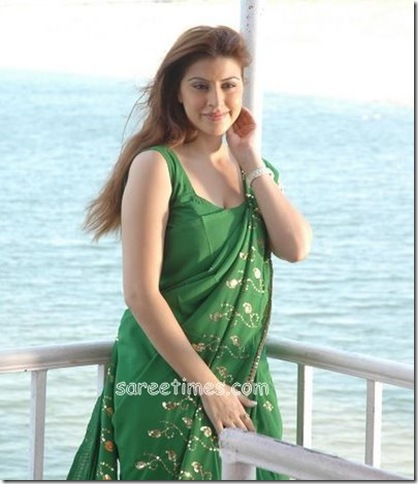 Karishma-Kotak_Green_Printed_Saree