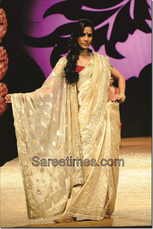 Gold_Embroidery__Designer_Saree