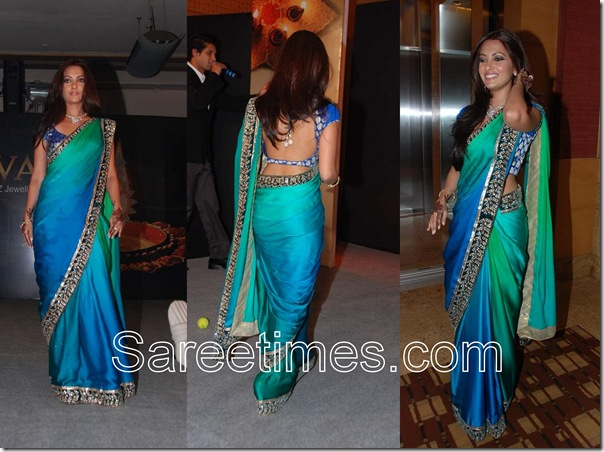 Riya_Sen_Georgette_Saree