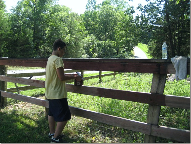 Travis painting the fence
