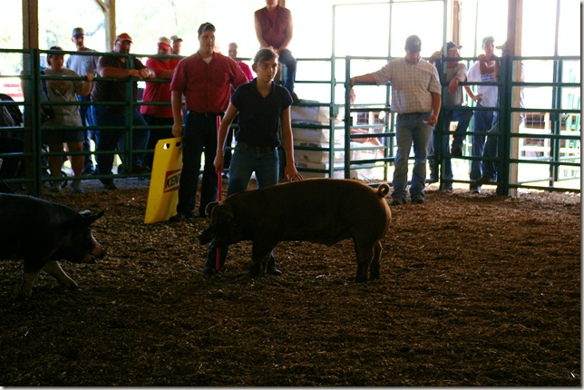 Emily showing her pig