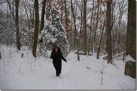 snow jan 11 306