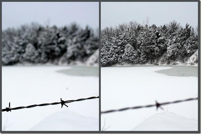 2011-01-20 jan 11 snow1