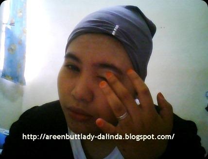 Snapshot_20110122_6