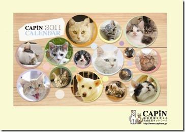 capin-calendar1