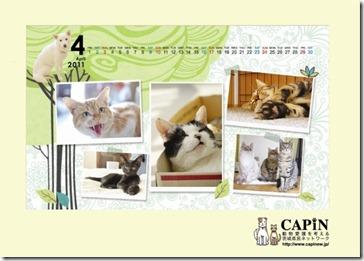 capin-calendar2