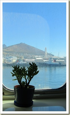 My backyard is about to change -  Cabin 4333 - Signal Hill, Lion's Head & V&A Waterfront Cape Town - 14 Feb. 2011 477