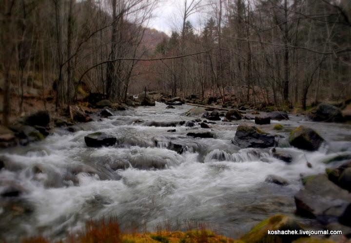 волшебная река
