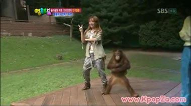 Narsha  เต้น  'Abracadabra' กับลิงอุรังอุตัง
