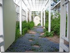 spring 08 -2