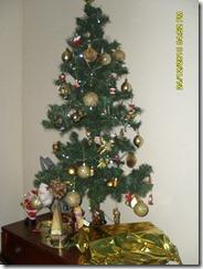 dezembro 2010 071 - Cópia