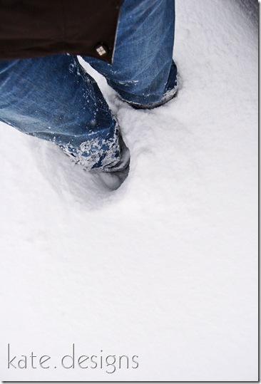 snow feb 6, 2010 006