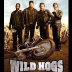 VCD Wild Hogs