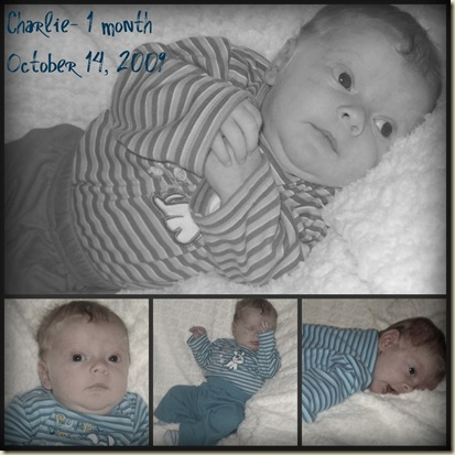Charlie 1 month