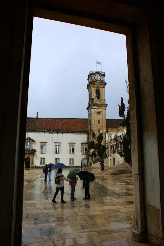 Coimbra no inverno, a cabra
