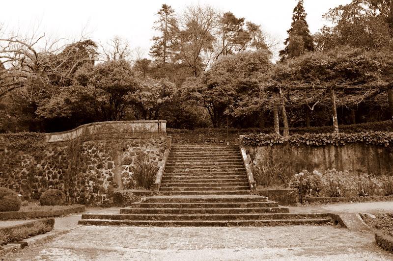Jardin dos Palácio do Buçaco