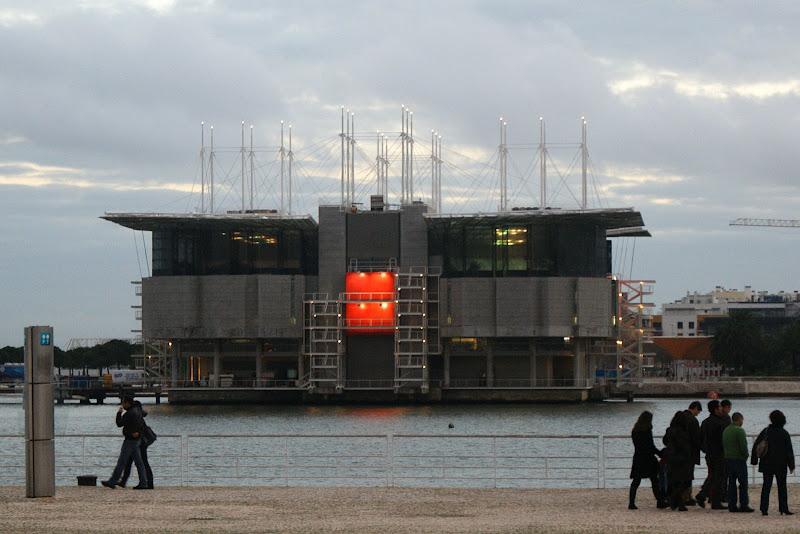 Crepúsculo, o oceanário de Lisboa