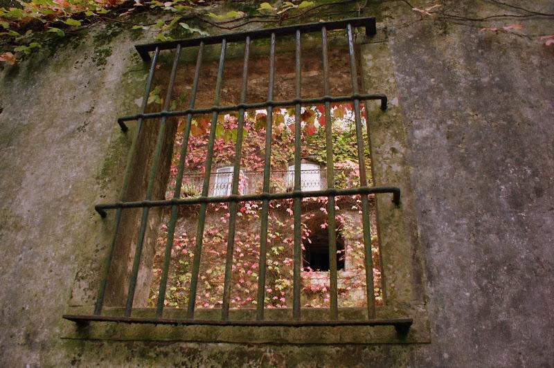 Sintra, uma janela para o Outono