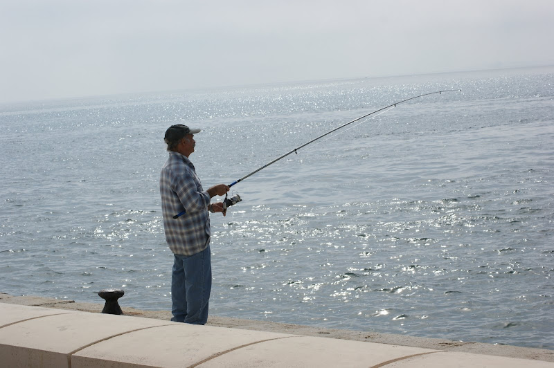 Pescando à beira Sado