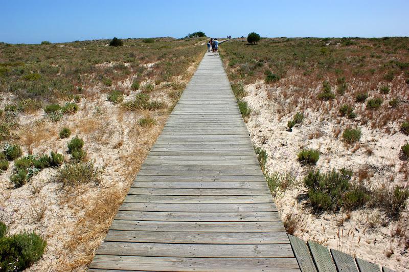 Ir à praia em Troia, passagens de madeira sobre as dunas