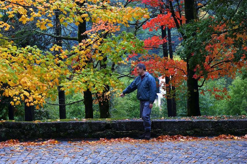 Outono no Gerês, workshop de José Romão