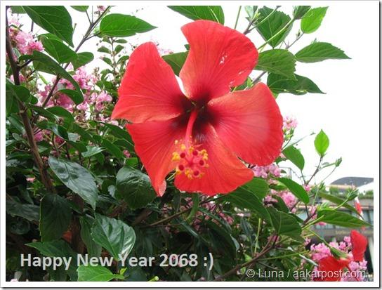 new year 2068