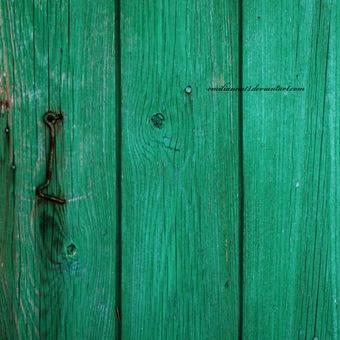 The_open_door_by_emilianna12