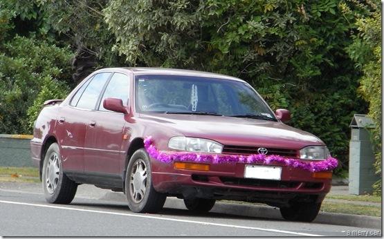 merry car R0011344