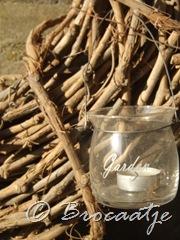 tuin maart 2010 010