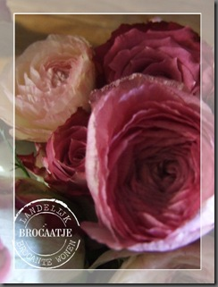bloemen 018