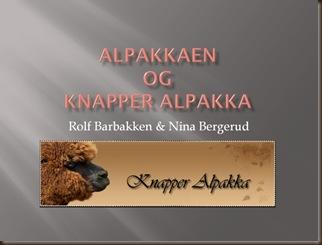 Alpakka og Knapper Alpakka. Presentasjon
