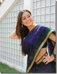 Shradha Arya – Telugu actress looking gorgeous in Saree… (8)