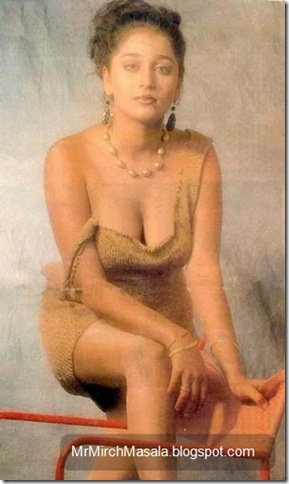 Farheen - The Yesteryear Actress in a Sexy Pose...
