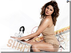 shamita shetty hot wallpapers (4)