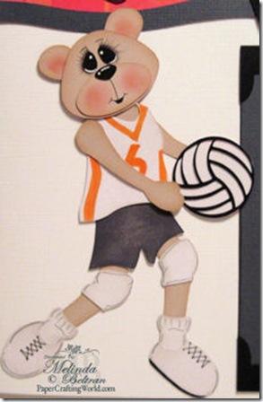 madison volleybear-350j