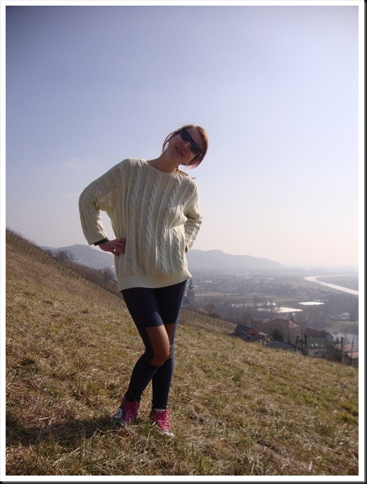 vintage jumper H&M leggings, Graceland sneakers (6)