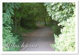 Horten-Moreppen-hjem over Røros 048